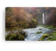 Autumn along Flumen river Canvas Print