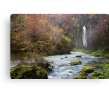 Autumn along Flumen river Canvas Print