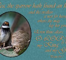 Nest Home - Psalm 84:3 by JLOPhotography