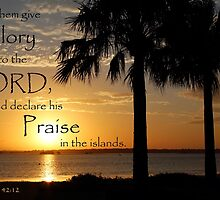 Island Praise - Isaiah 42:12 by JLOPhotography