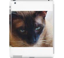 Timo iPad Case/Skin