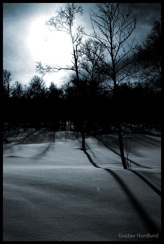 Winter. Going on Spring. by Gustav Nordlund