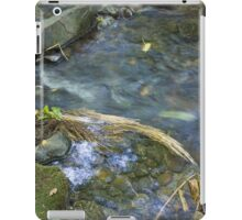 Renfrew Ravine - grass jam iPad Case/Skin