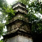Chinese Pagoda  by Christina Tang