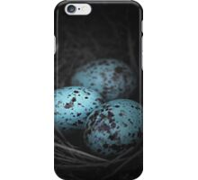 Nest of 3 iPhone Case/Skin