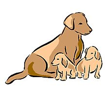 Dog With Puppies Photographic Print