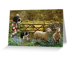 Collecting The Strays Greeting Card