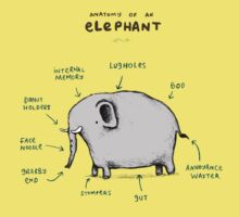 Anatomy of an Elephant Kids Clothes