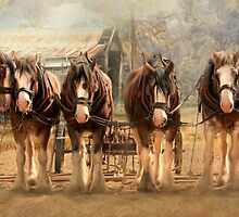 Six On The Hitch by Trudi's Images