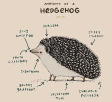 Anatomy of a Hedgehog T-Shirt