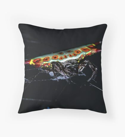 Spider? Throw Pillow
