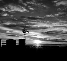 Windmill Sunrise - Black & White by Neil