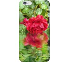 Wet red roses 5 iPhone Case/Skin