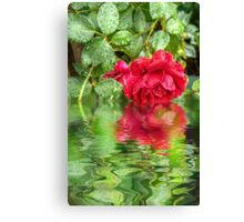 Wet red roses 5 Canvas Print