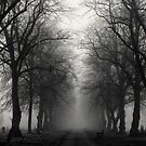 Lost In The Mist Of Time by Lee  Gill