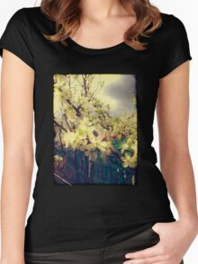 White Plum Blossoms 3 Women's Fitted Scoop T-Shirt