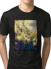White Plum Blossoms 3 Tri-blend T-Shirt