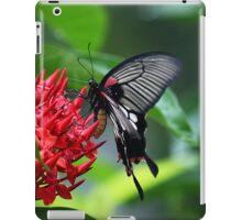 Pachliopta aristolochiae iPad Case/Skin