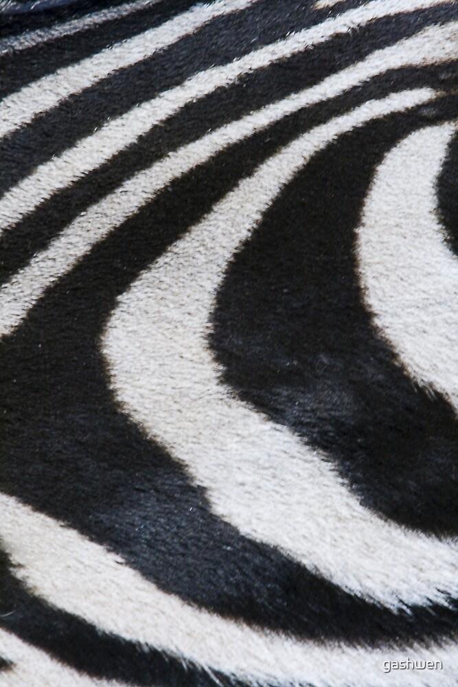stripes by gashwen