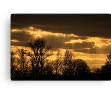 golden sky 2 Canvas Print