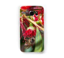 Australian Bottlebrush flower with Bee Samsung Galaxy Case/Skin