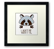 Little raccoon Framed Print