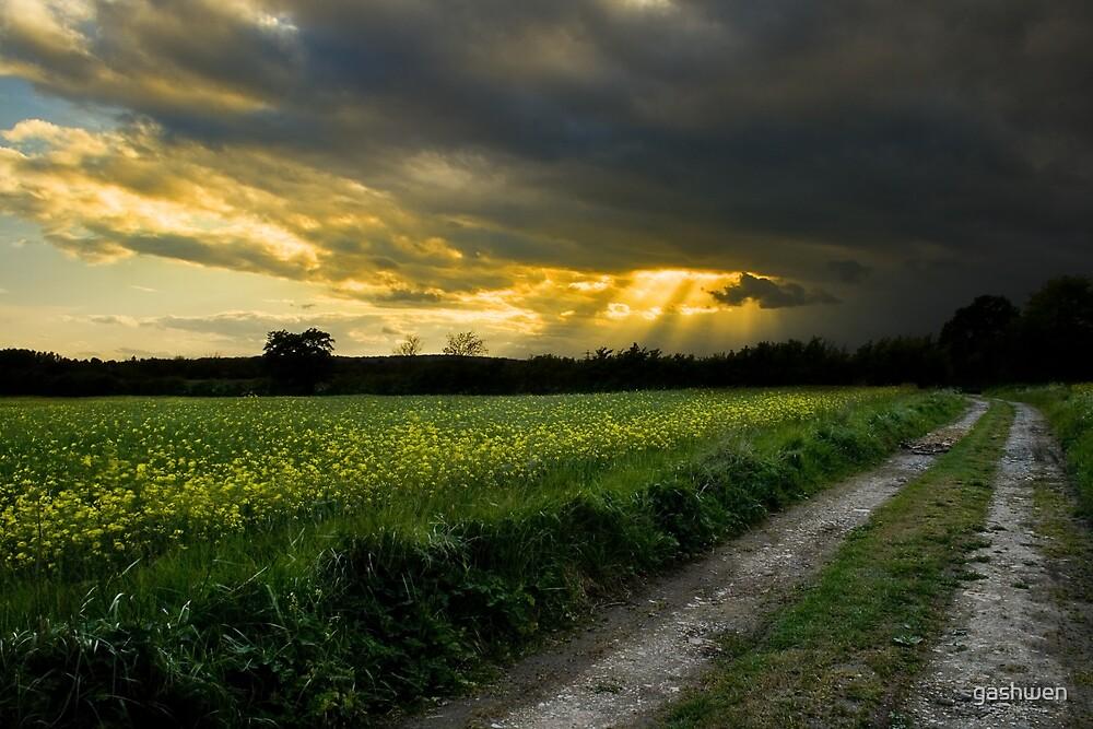 path to glory by gashwen