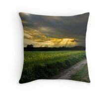 path to glory Throw Pillow