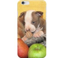 Thanksgiving (prints & cards w/words - all other items w/no words) iPhone Case/Skin