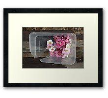 Take-away blossoms Framed Print