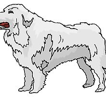 Great Pyrenees by kwg2200