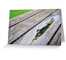 Mossy Park Bench Greeting Card