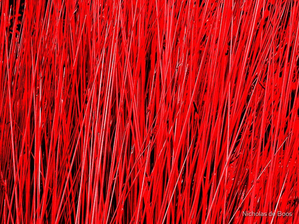 Pole Red by Nicholas de Boos
