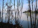Lake Tana, Ethiopia by John Douglas