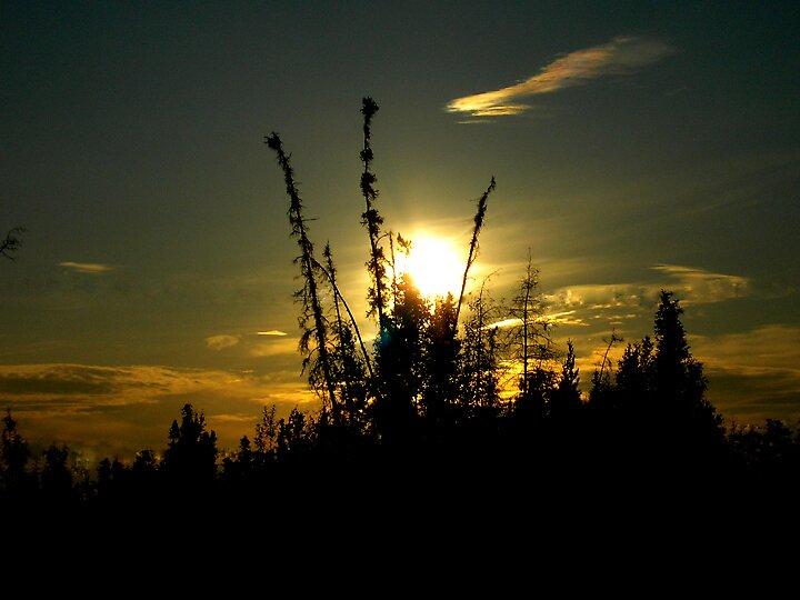 Alaskan Sunset by sabrosa1068