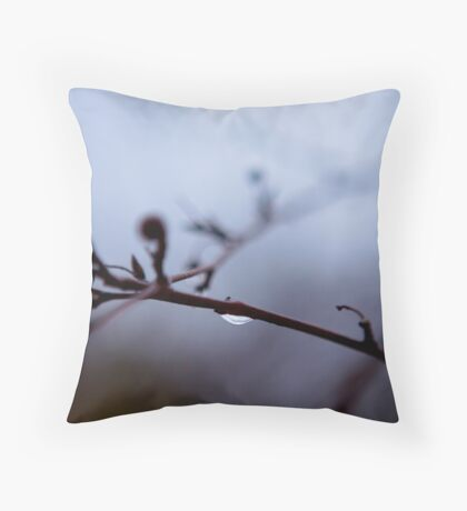 Dropped into Winter Throw Pillow
