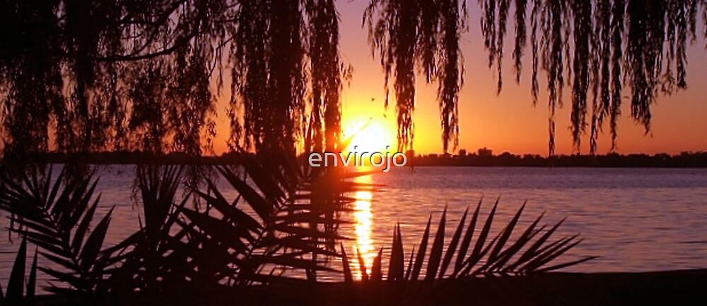 Sunset Silhouette by Joanne Byron
