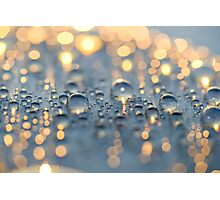 Close up photo of raindrops lit by sunset light Photographic Print