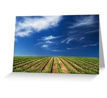 Vineway to Heaven Greeting Card