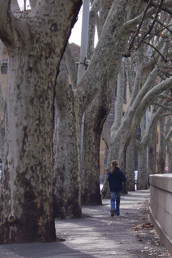 walking alone by dompech