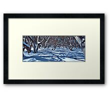 Snow Gums and Shadows Framed Print