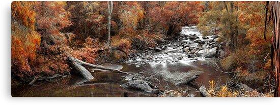 Cascades In Autumn  by EOS20