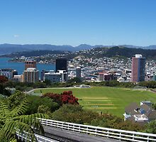 Top of the Cable Car Wellington NZ   by Christine  Wilson Photography