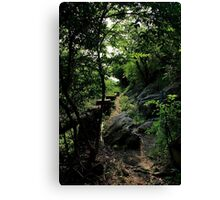 The Lost Trail - Hong Kong. Canvas Print