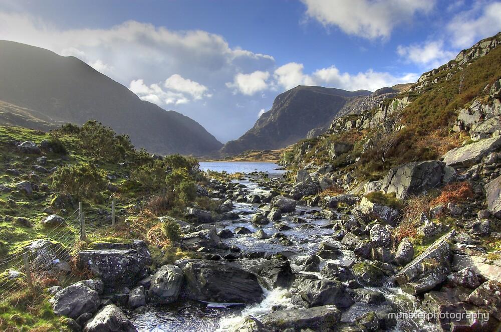 Wild Ireland by munsterphotography
