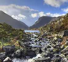 Wild Ireland by munsterphotography