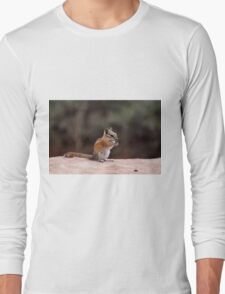 Chip on a rock Long Sleeve T-Shirt