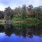 Big Brook Dam - Pemberton Western Australia by EOS20