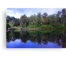 Big Brook Dam - Pemberton Western Australia Canvas Print