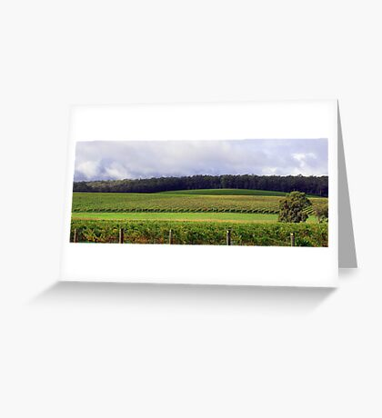 Pemberton Vineyard Panorama  Greeting Card
